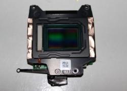 купить Сенсор, матрица фотоаппарата Nikon D3100